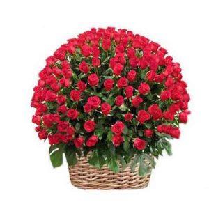 1000-Red-Roses-Basket