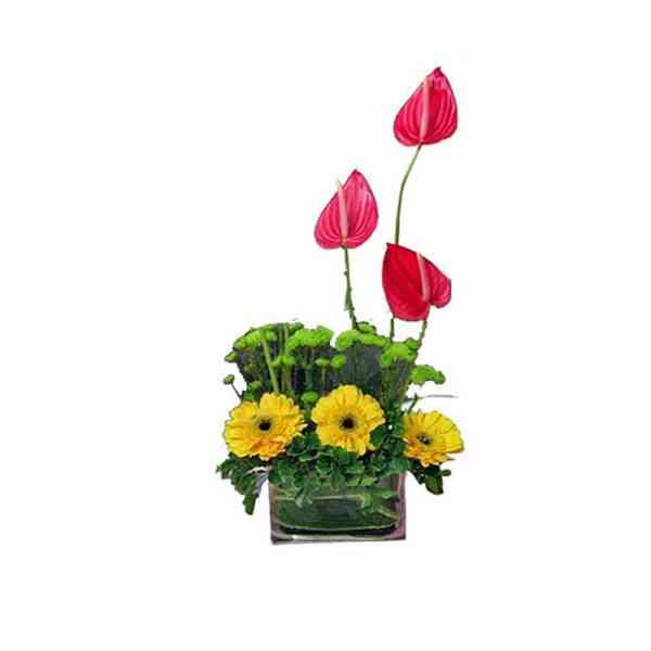 Anthurium-&-Gerbera-Vase
