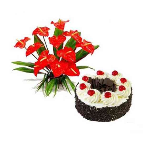 Anthurium-With-Black-Forest