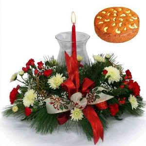 Christmas-Flowers-With-Plum