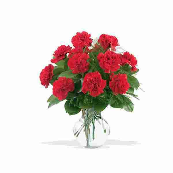 Red-Carnations-Vase