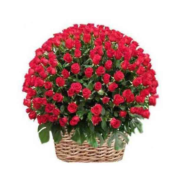 Red-Roses-Basket-500-Flower