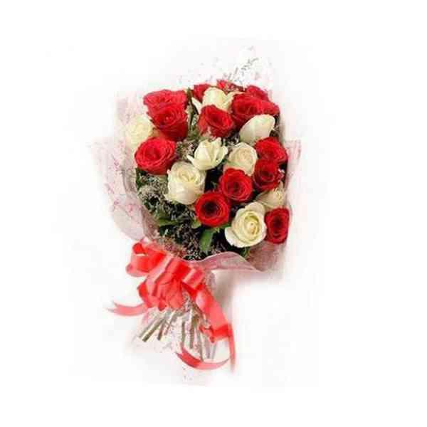 Red-&-White-Roses-21-Flower